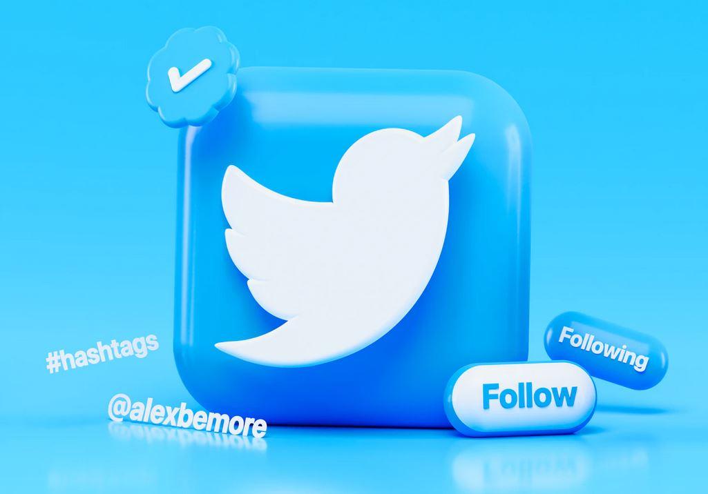 le réseau social twitter et son logo